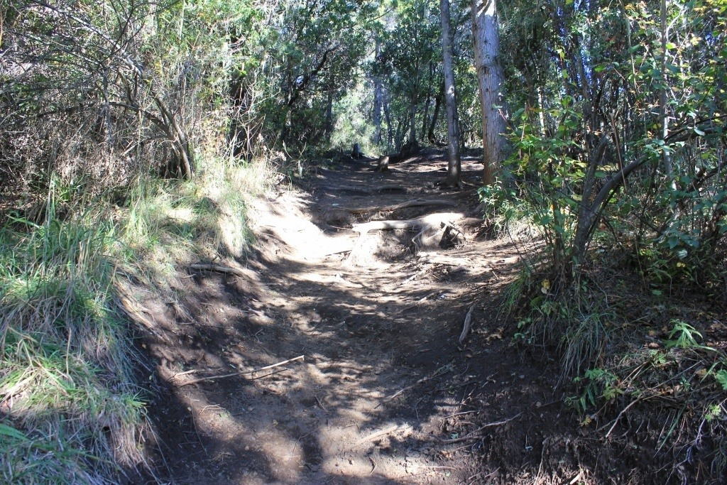 Our uphill climb to Cerro Campanario