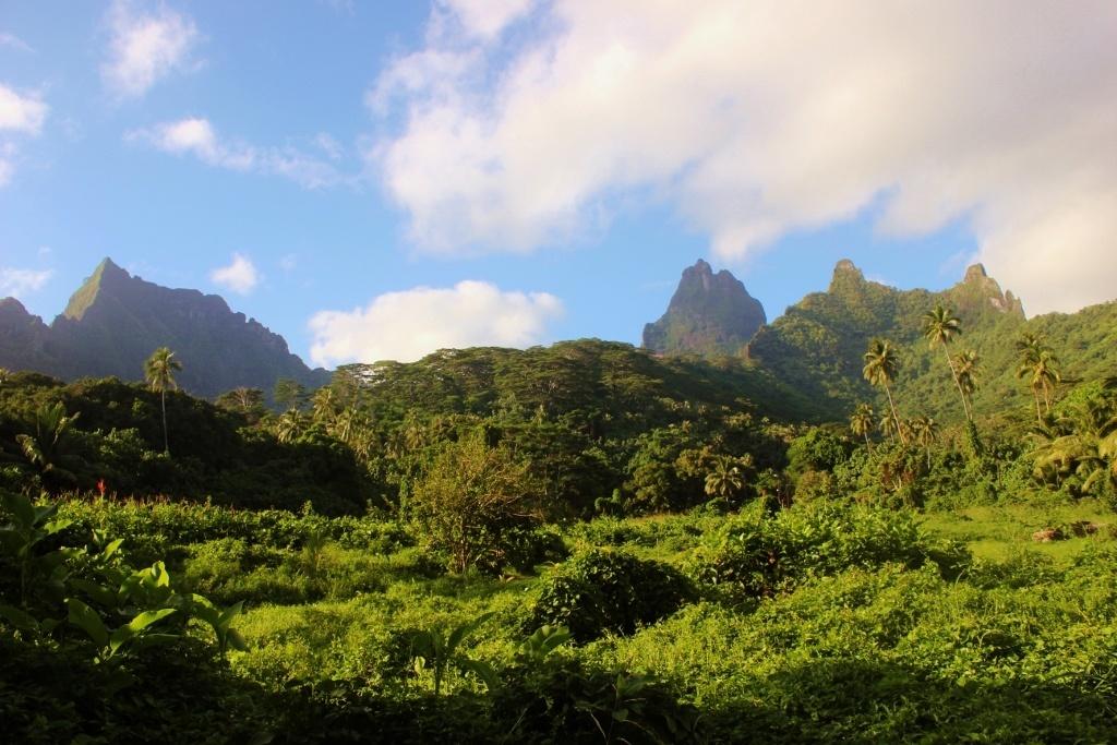 Mountains on Moorea, French Polynesia
