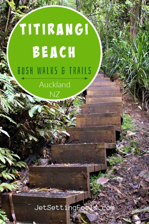 Titirangi Beach Bush Walks by JetSettingFools.com