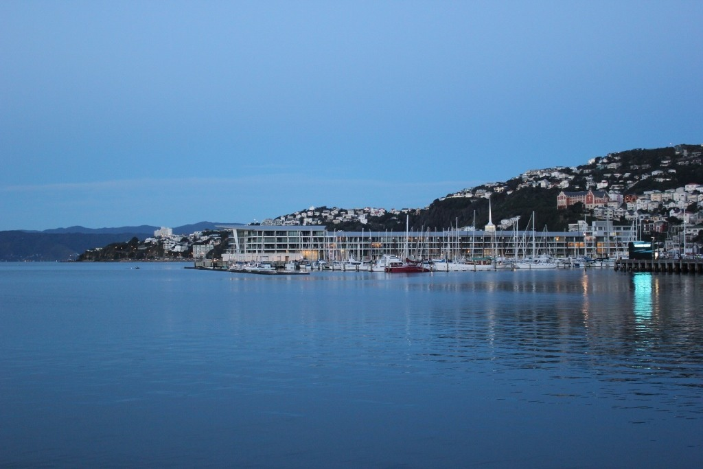 Falling in love with Wellington, New Zealand JetSetting Fools
