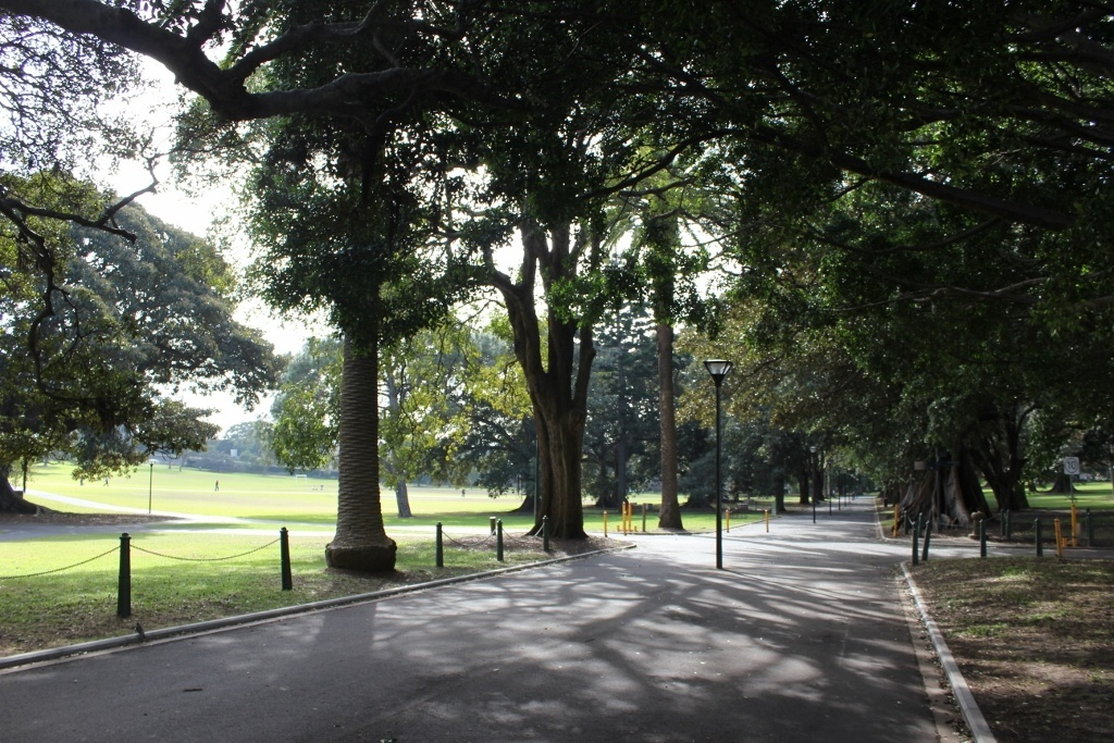 One day itinerary for Sydney: The Domain