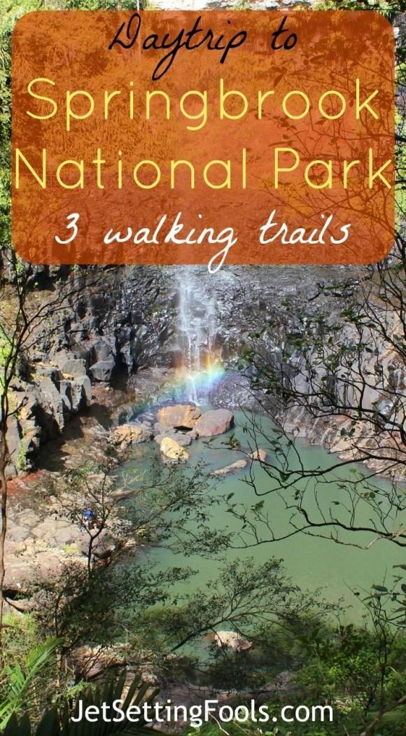 Daytrip to Springbrook National Park 3 walking trails Australia JetSetting Fools