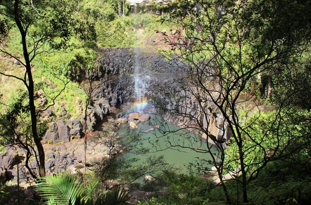 Springbrook National Park Walk: Purling Brook Falls