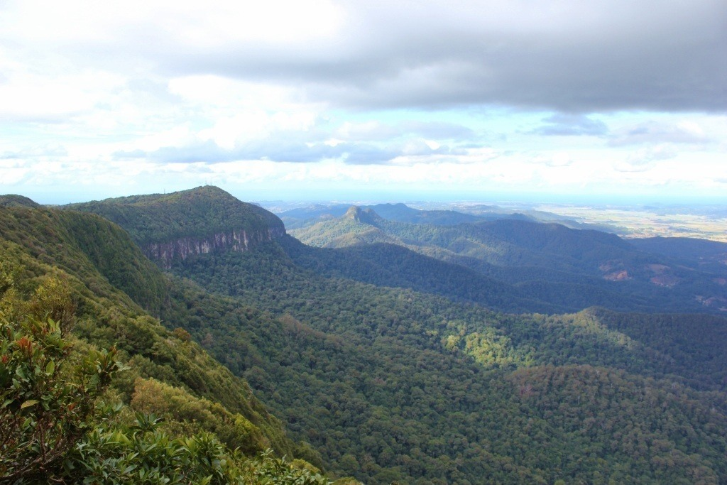 The Best of All Lookout at Springbrook National Park