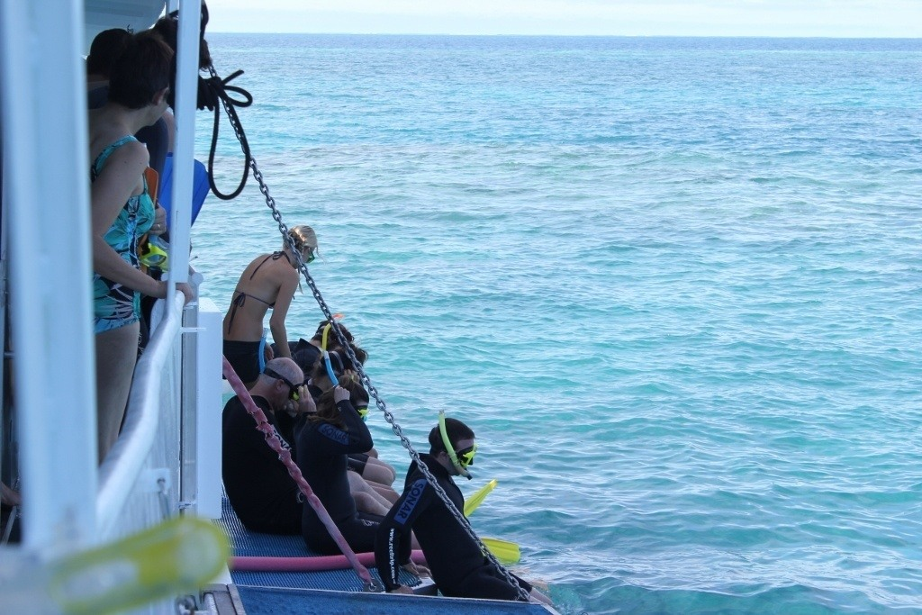 Snorkelers getting into water at Great Barrier Reef
