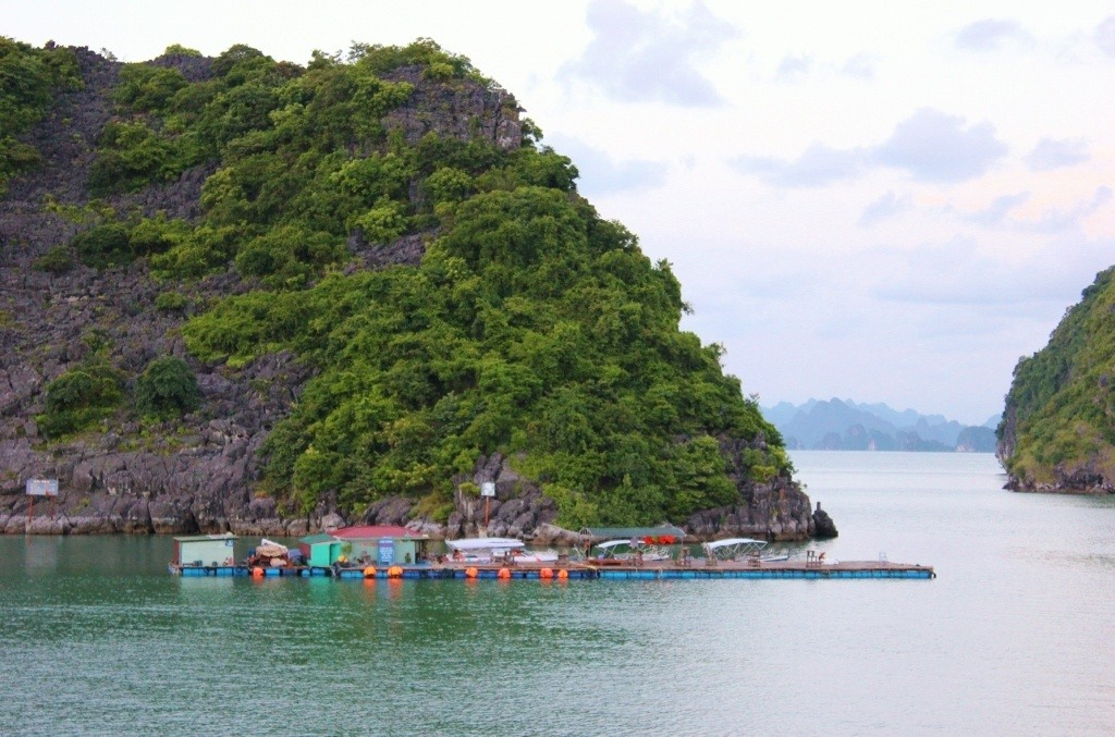 Halong Bay cruise: Remaining floating villages
