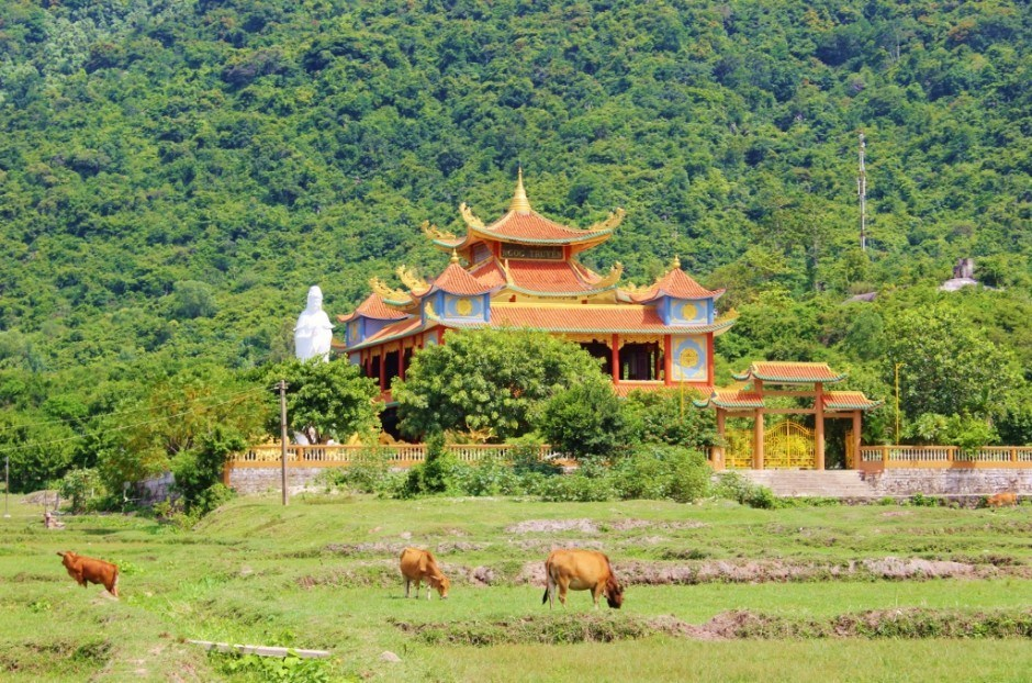 Day trip to the Cham Islands: temple
