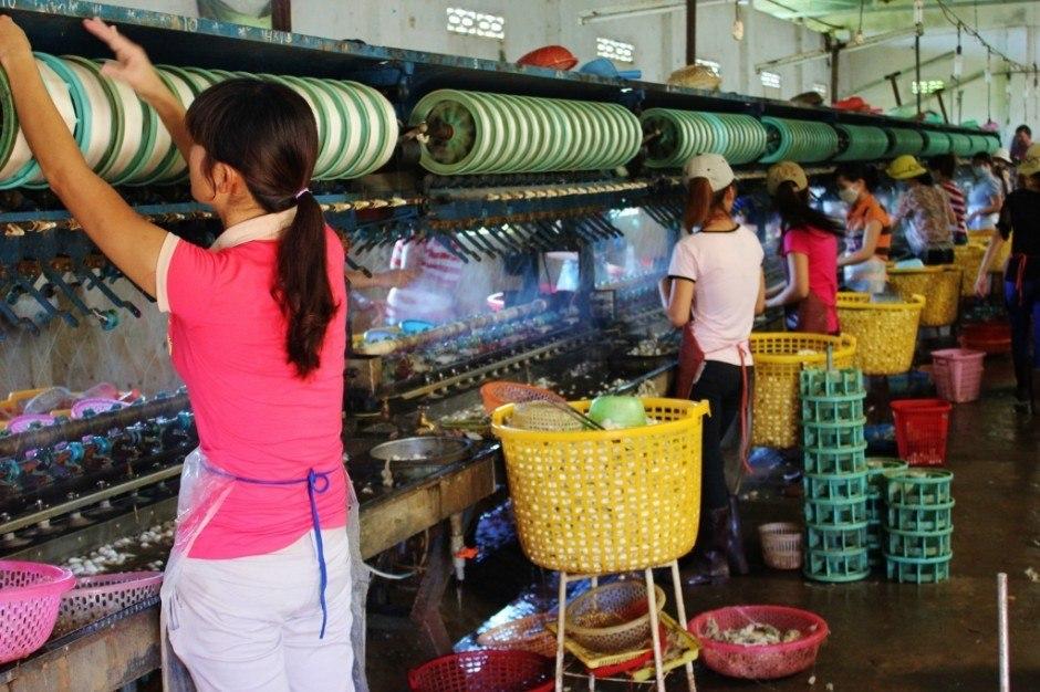 Women working in Dalat Silk Factory in Vietnam Central Highlands