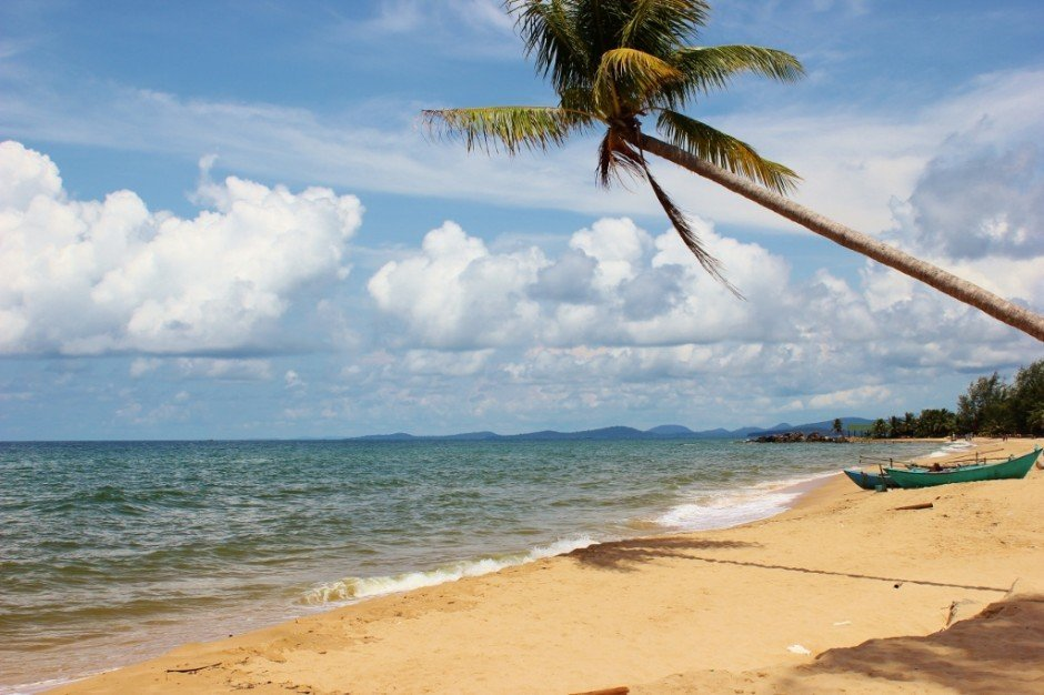 Phu Quoc Island, Vietnam: A palm tree on the beach