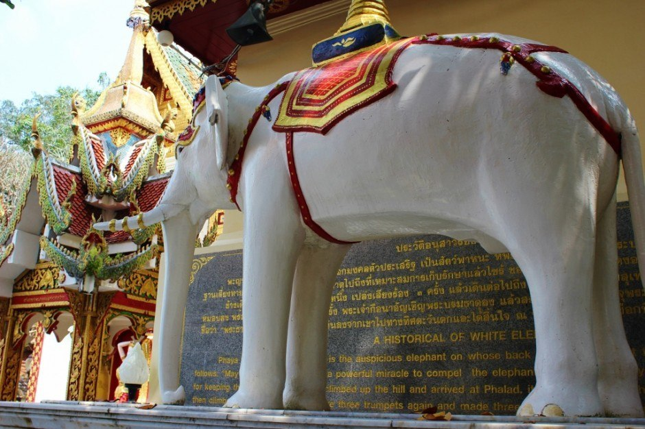 Visiting Chiang Mai temples: Doi Suthep Temple - the white elephant has stong meaning at the temple