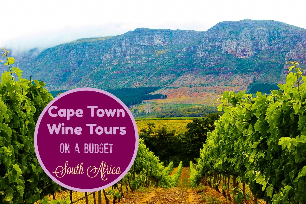 Cape Town Wine Tours on a budget South Africa by JetSettingFools.com