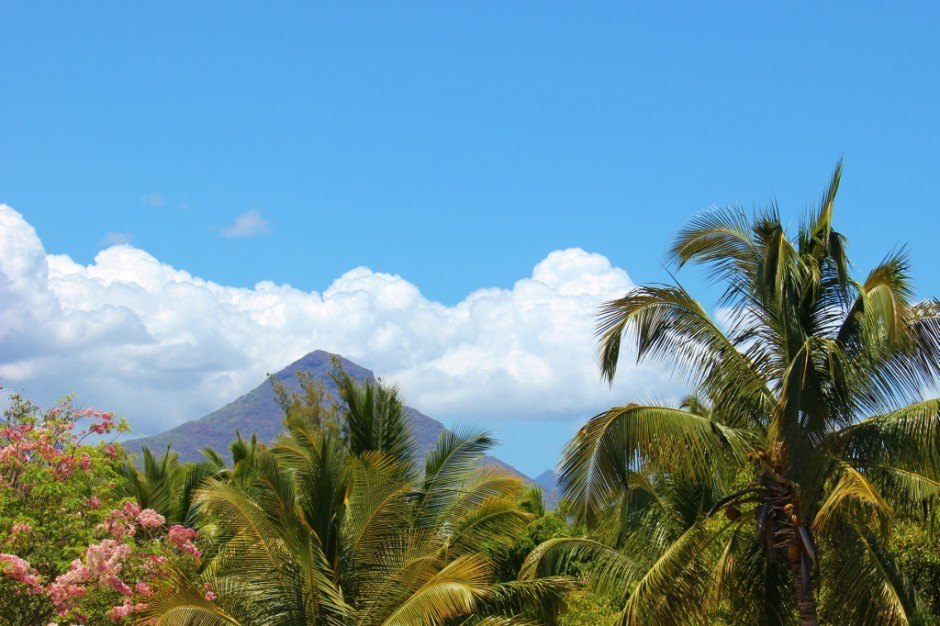 Palm trees and mountains on Mauritius Island
