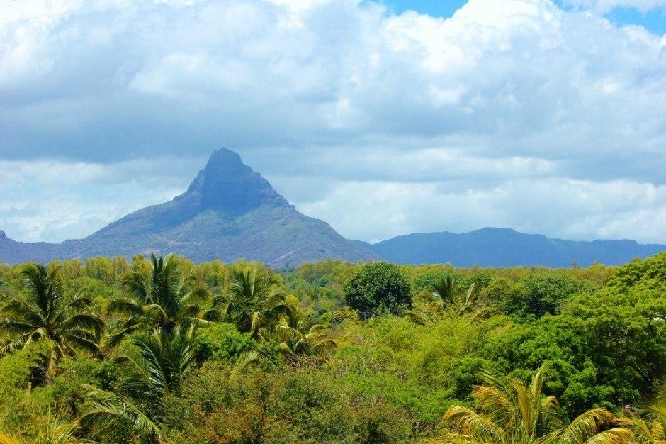 A southwest Mauritius tour navigates the interior of the island
