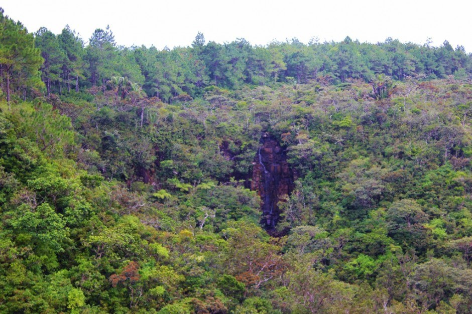 Southwest Mauritius Nature Tour: Alexandra Falls