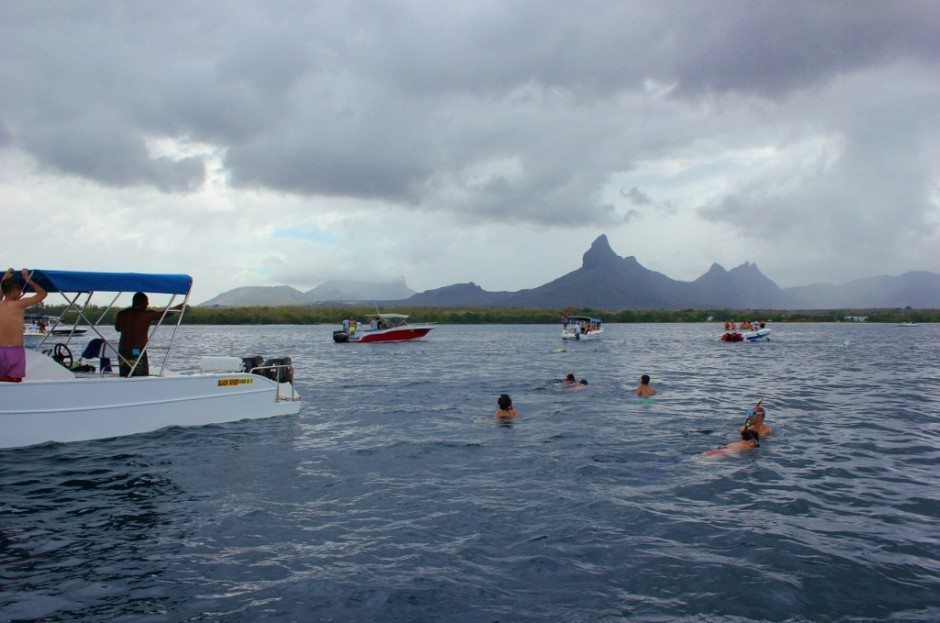 Swimming with Dolphins on Mauritius: swimmers wait in the water for the dolphins to appear