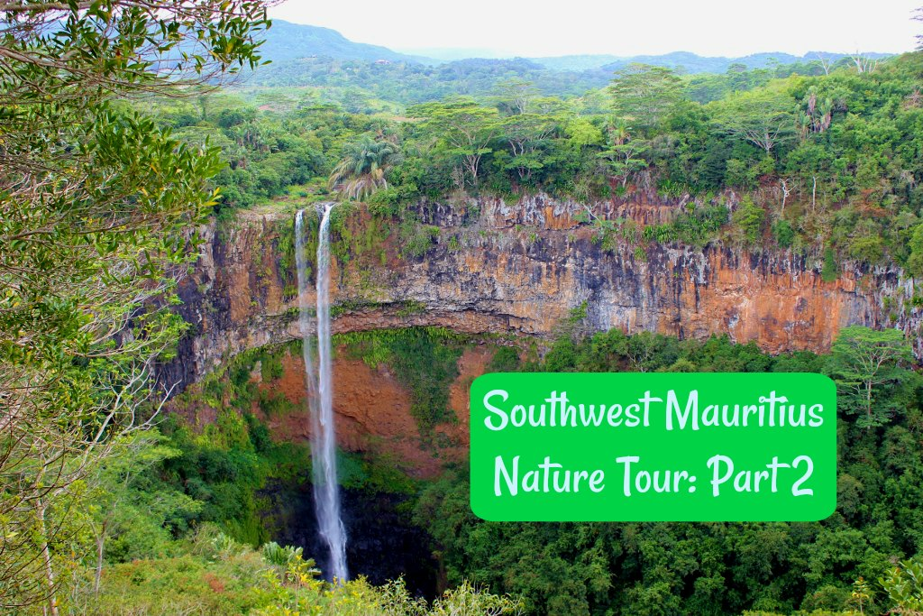 Southwest Mauritius Nature Tour Part 2 by JetSettingFools.com