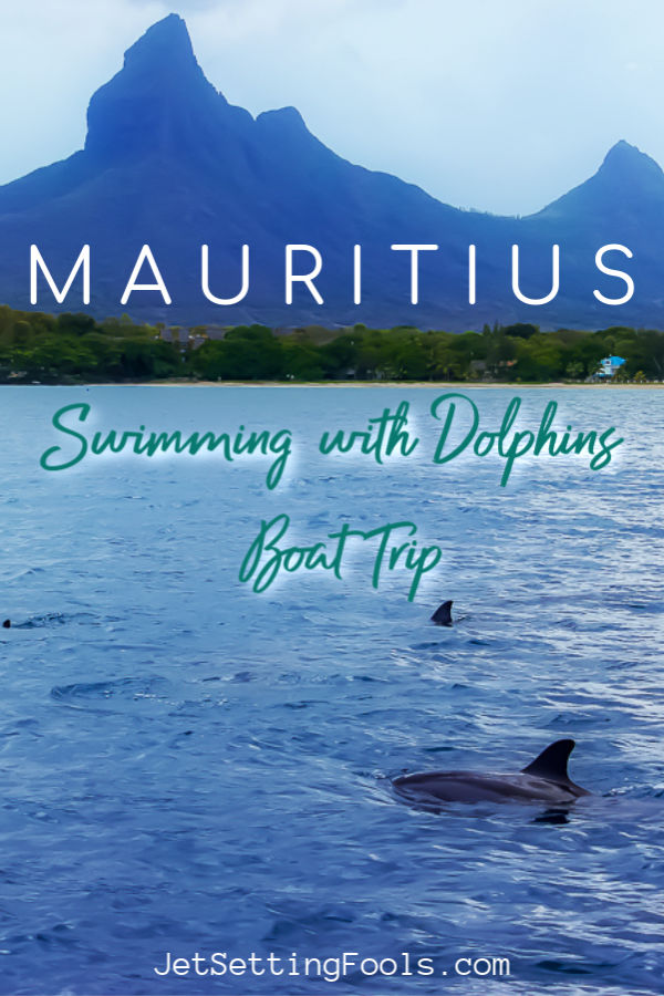 Swimming With Dolphins Mauritius by JetSettingFools.com