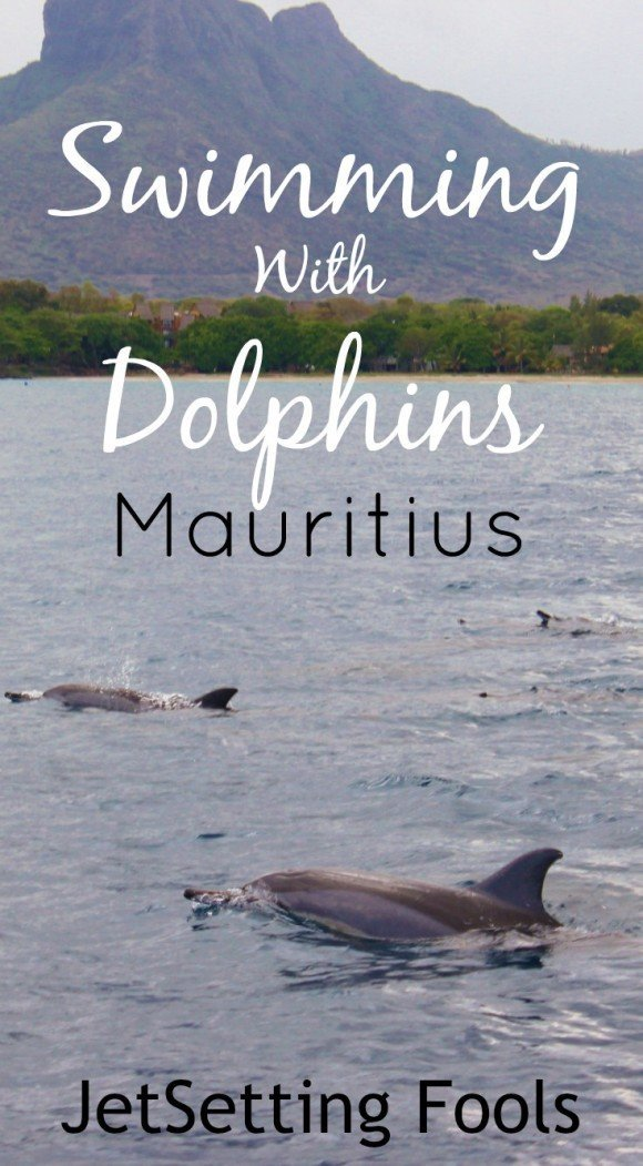 Swimming with Dolphins on Mauritius JetSetting Fools