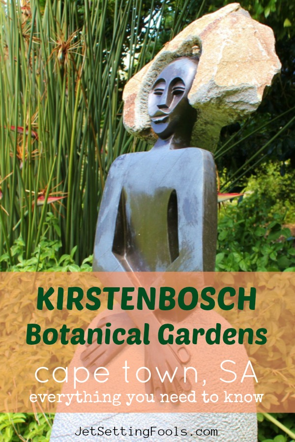 Kirstenbosch Botanical Gardens What you need to know, Cape Town, SA by JetSettingFools.com