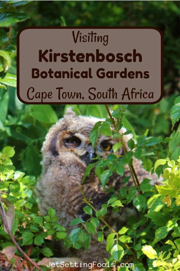 Visit Kirstenbosch Botanical Gardens, Cape Town, SA by JetSettingFools.com