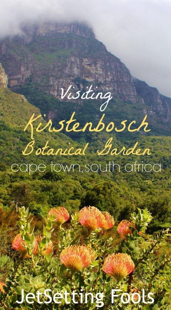 Visiting Kirstenbosch Botanical Garden Cape Town South Africa JetSetting Fools