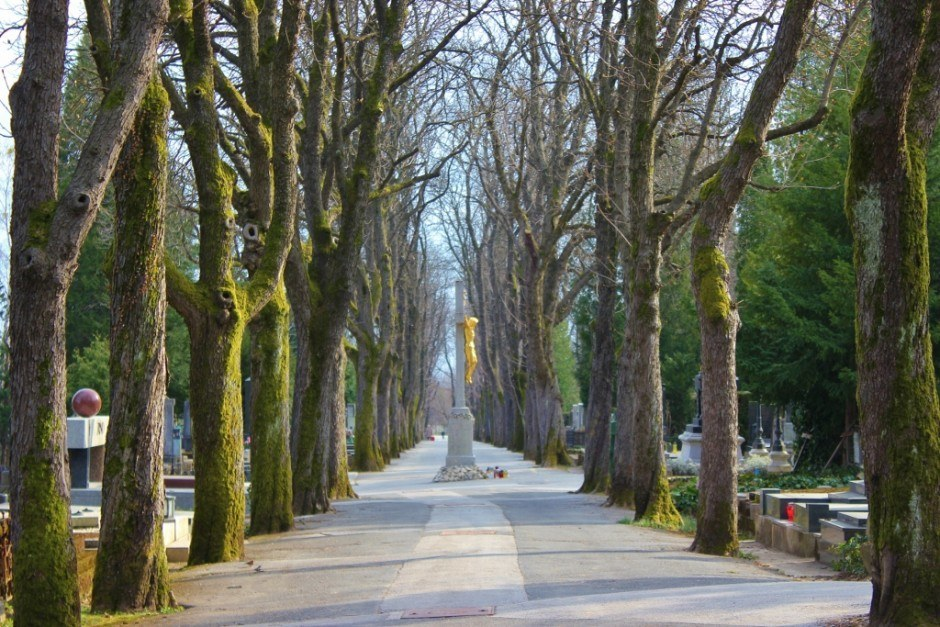 One of the parks in Zagreb is the Mirogoj Cemetery