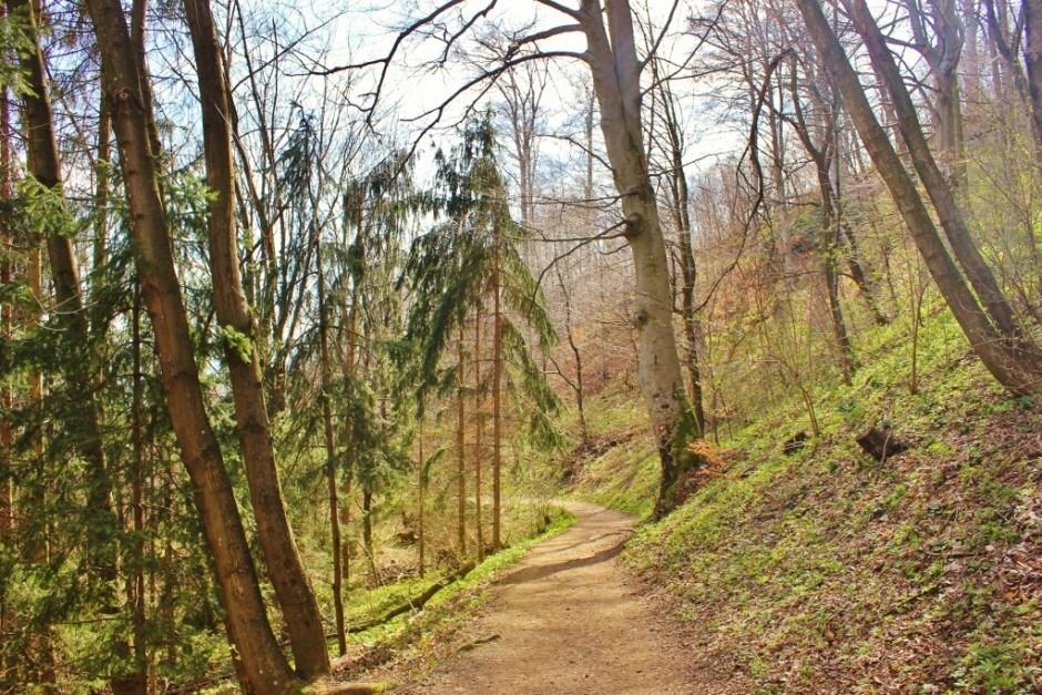 Medvednica Nature Park in Zagreb, Croatia