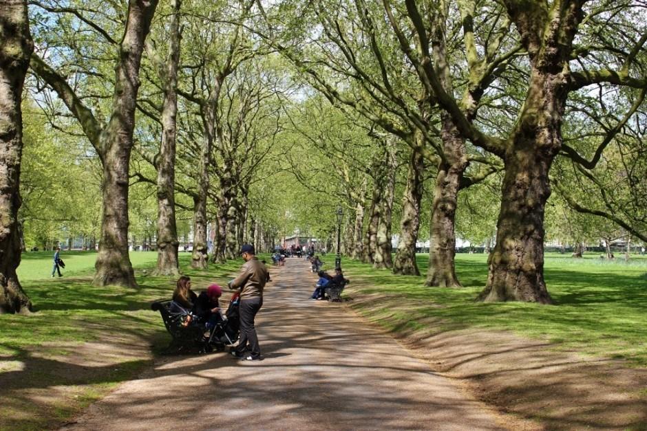 Westminster Sights: St. James's Park