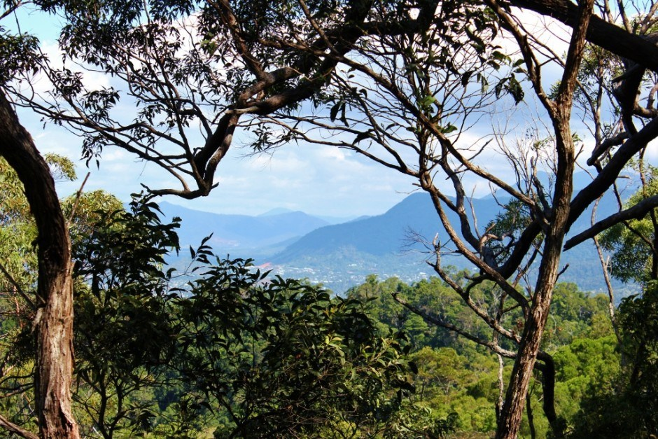 Best Hikes of our Journey: Scenic view on the Blue Arrow Trail in Cairns, Australia