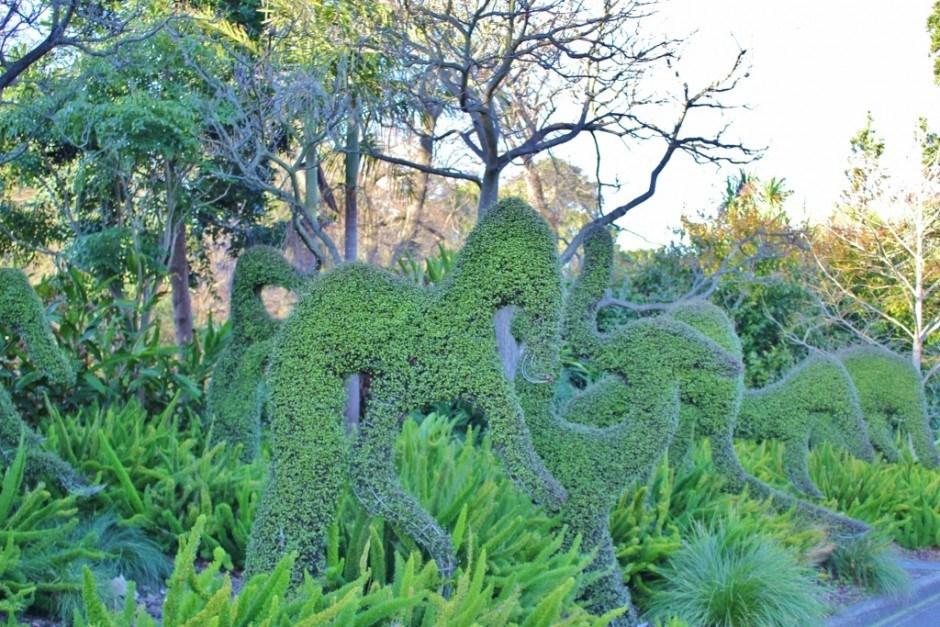 The Botanic Gardens in Melbourne
