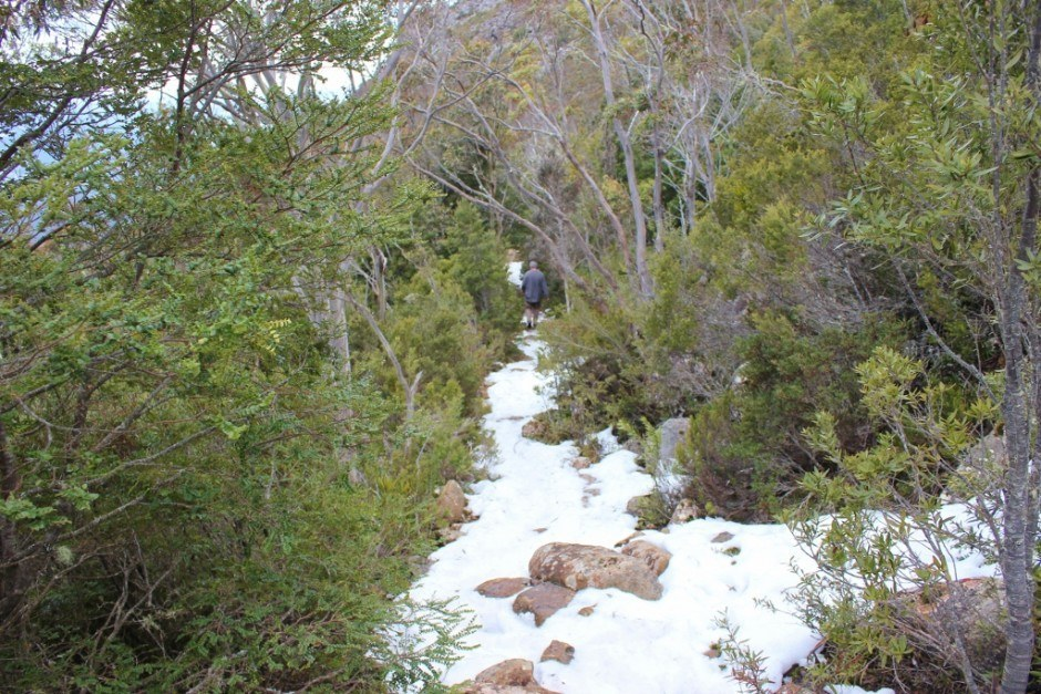 Hiking down Mount Wellington, the trails were covered in snow most of the Zig Zag Track.