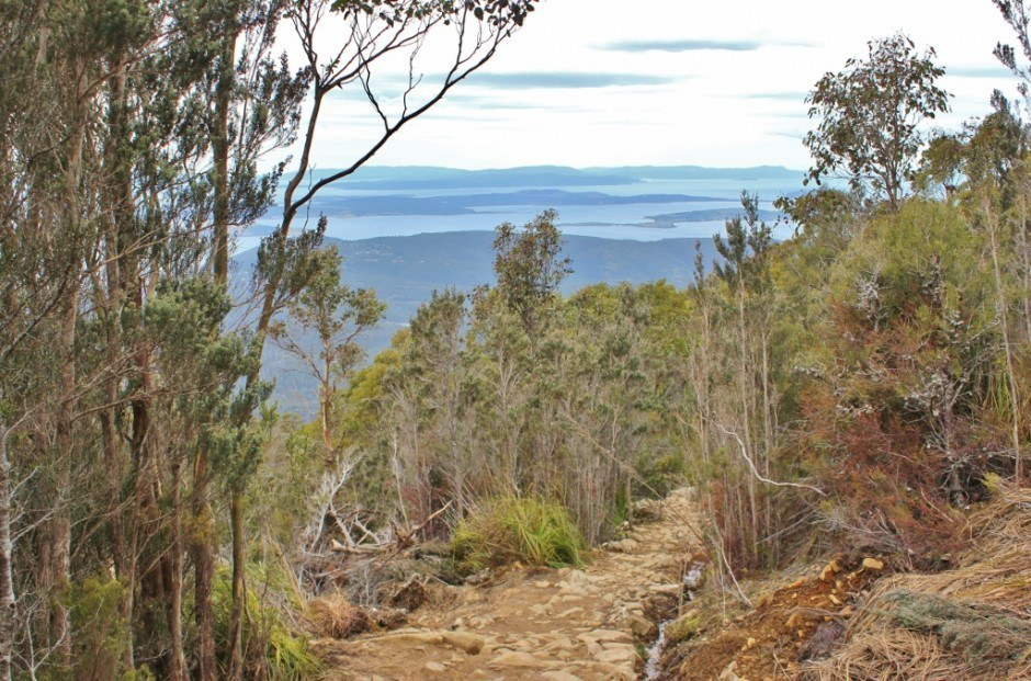 We had beautiful views while hiking down Mount Wellington.