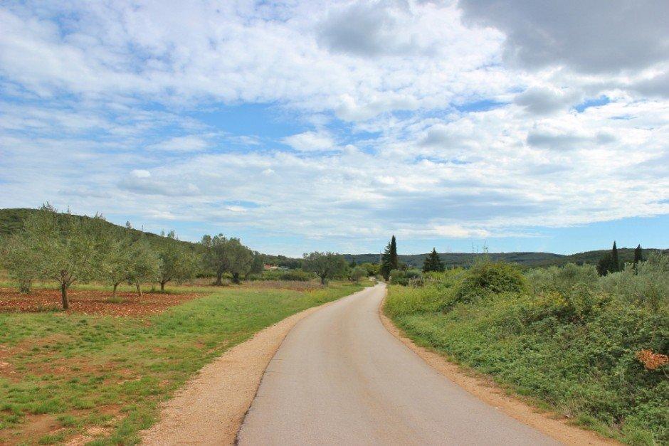 The hiking and biking trails in Rovinj croatia lead through olive groves and vineyards