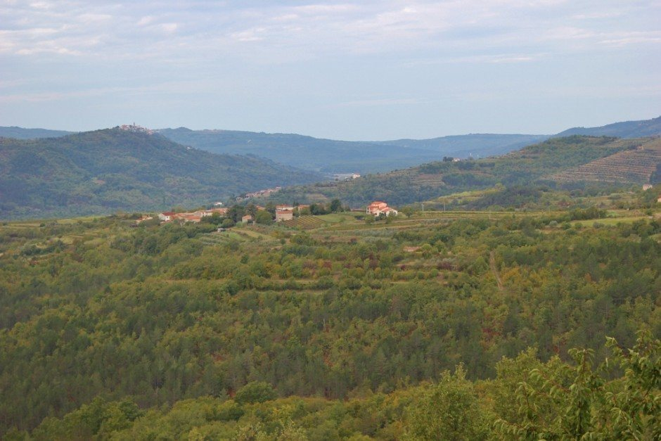 Sweeping views from Karlic Tartufi, a plantation that offers guided truffle hunting