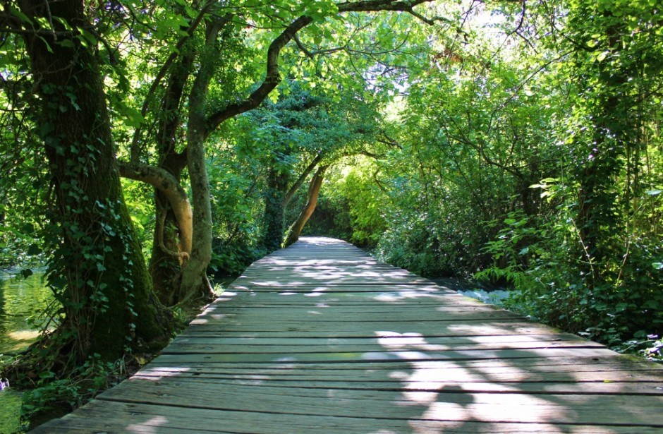 The wooden planked footpath through Krka National Park