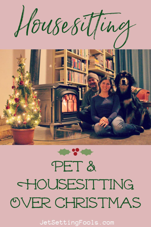 Pet sitting over Christmas by JetSettingFools.com