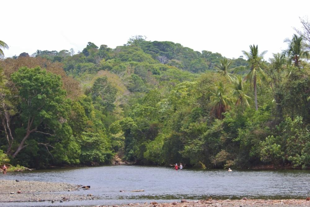 Pavones, Costa Rica Walk Rio Claro JetSetting Fools