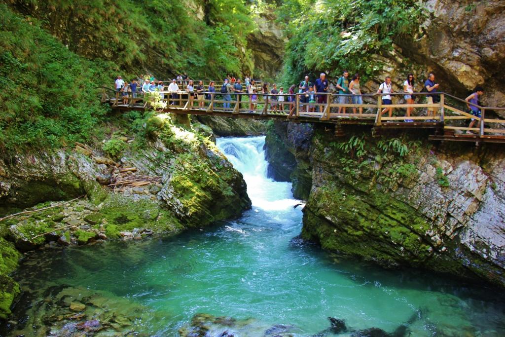 Hordes of Summer Tourists crowd walkways at Vintgar Gorge