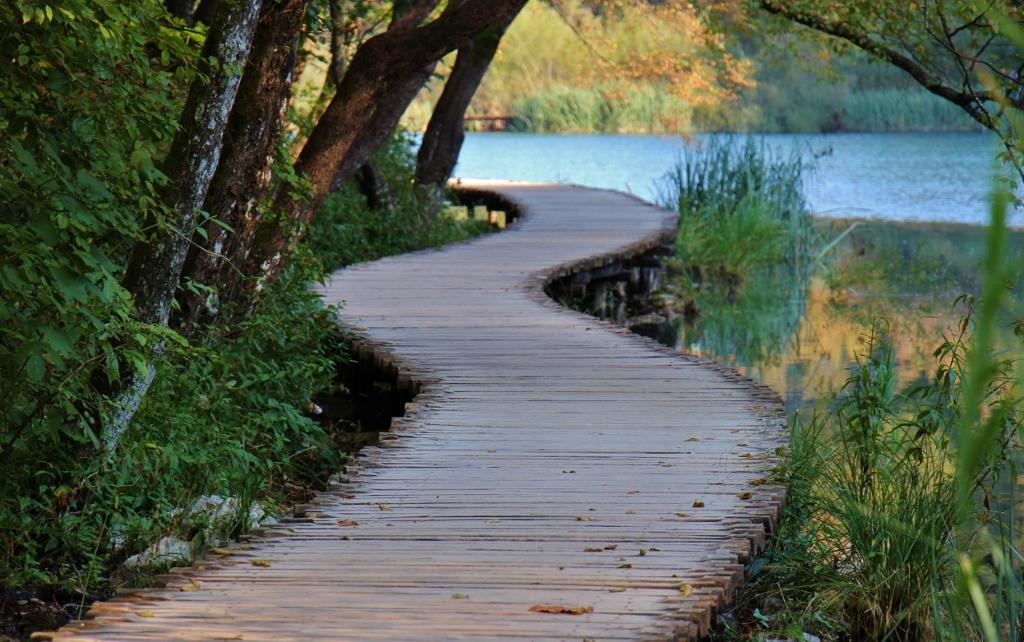 Curving path on Lower Lakes, Plitvice Lakes National Park, Croatia