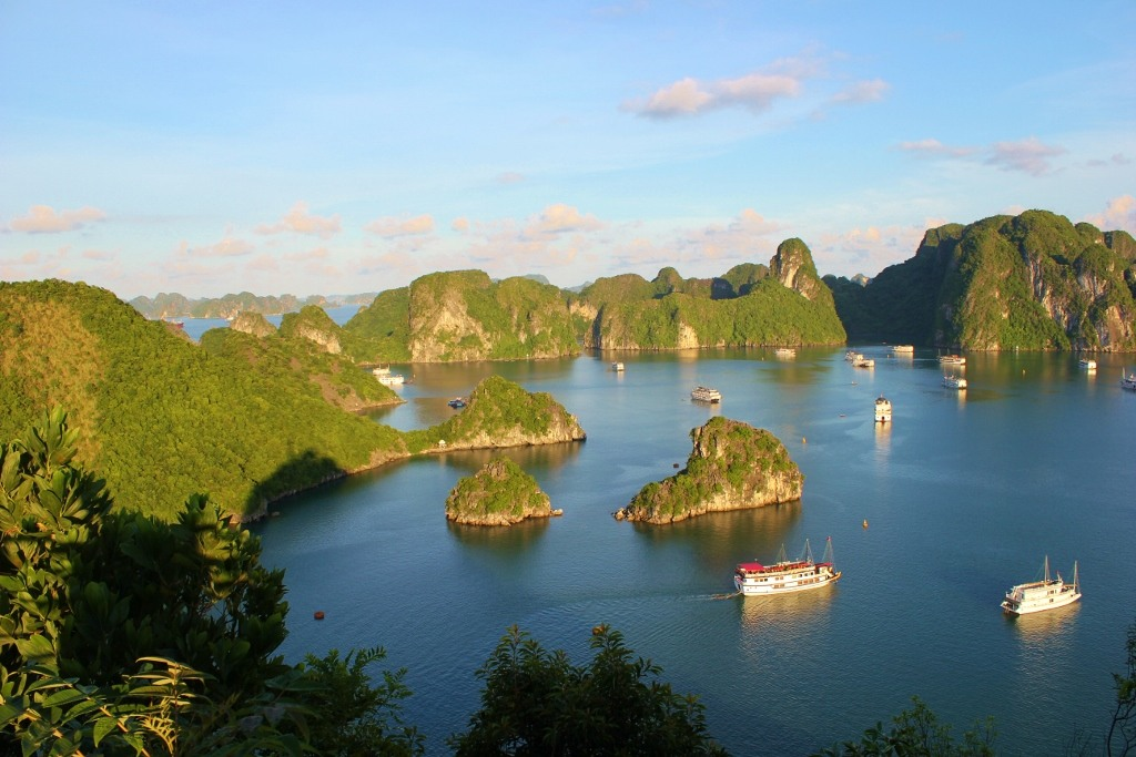 Halong Bay karsts and junk boats from Ti Top Mountain, Vietnam