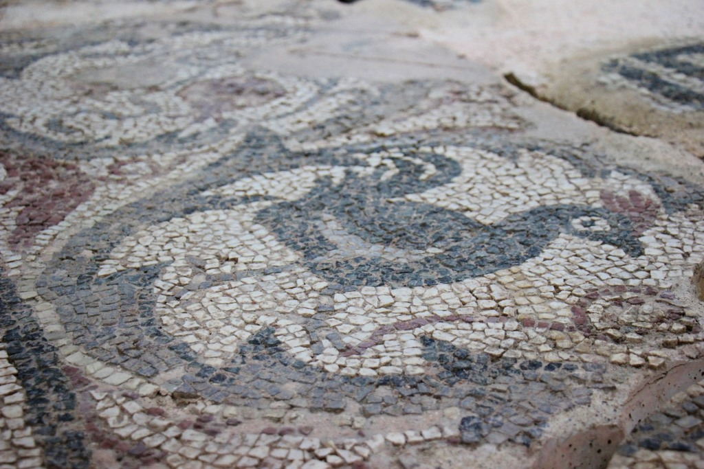 Ancient rooster tiled mosaic at Kosovo Museum in Prishtina, Kosovo