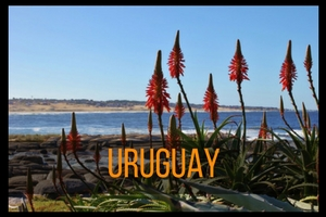 Uruguay Travel Guides by JetSettingFools.com