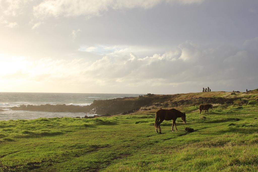 Grazing horses at Tahai on Easter Island, JetSettingFools.com