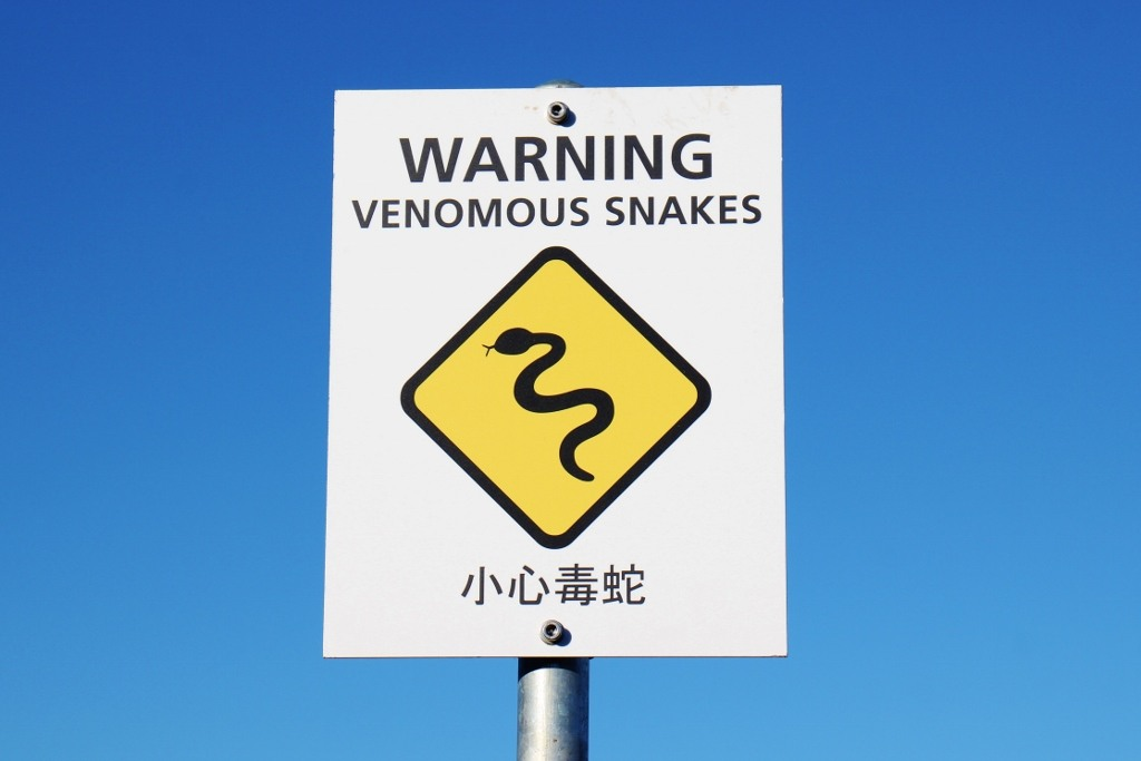 Venomous Snake Warning Sign, Great Ocean Road, Australia, JetSettingFools.com