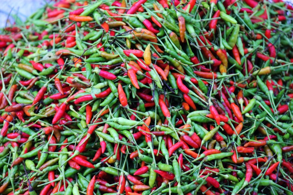 Piles of chilis for sale at Morning Market in Luang Prabang, Laos
