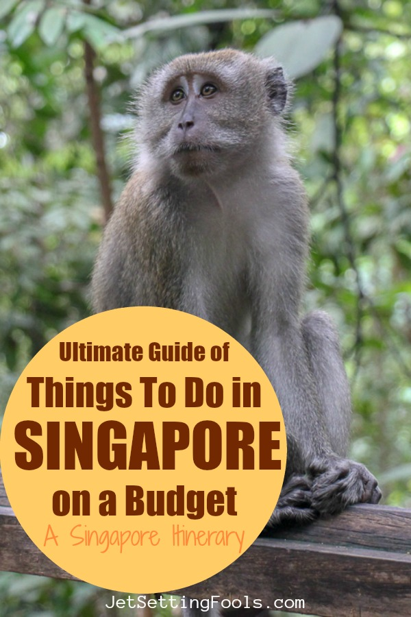 Things to do in Singapore: A Singapore Itinerary by JetSettingFools.com