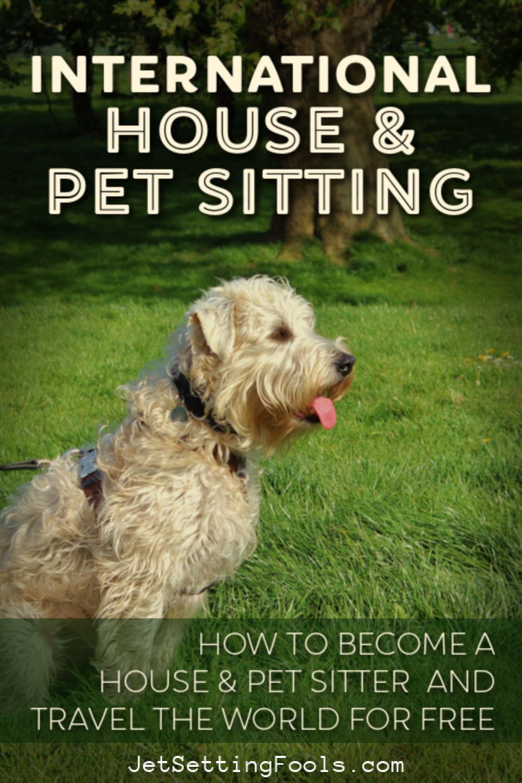 International Pet Sitting by JetSettingFools.com